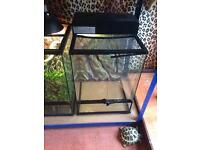 Small tall Viv with canopy