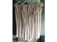 4 x Brand new, labels still on, Coast Adelina Maxi Bridesmaid Dresses for Sale
