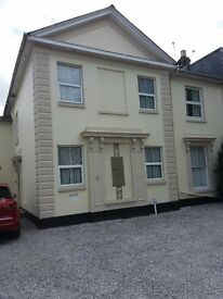 1 bedroom flat for( short term aprox 3-6 months ) rent