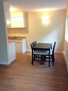 Fully Furnished 1 bedroom unit - Michael Manor #11 Edmonton Edmonton Area image 3