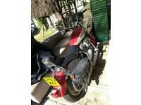 Harley Davidson 883 Custom Low Sportster
