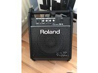 Roland PM-10 Amp