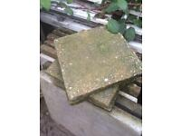 Paving / stepping stones