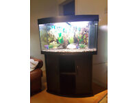 180 LITER JUWEL VISION BOW FRONTED FISH TANK AND STAND FOR SALE,,FULL SET UP