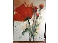 Poppy picture
