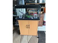 110l rena fish tank full set up with stand heater light lid filter black gravel ornament all in pic