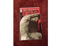 The walking dead comic #45