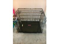 Kong Dogs Cage