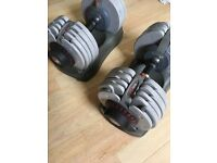 Bodymax dumbbells pair
