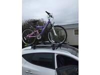 Optima ladies mountain bike