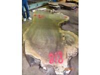 Edel Nussbaum Maserknolle Bohle Diele aus Zentralasien Nr. 8/8 Rheinland-Pfalz - Halsenbach Vorschau