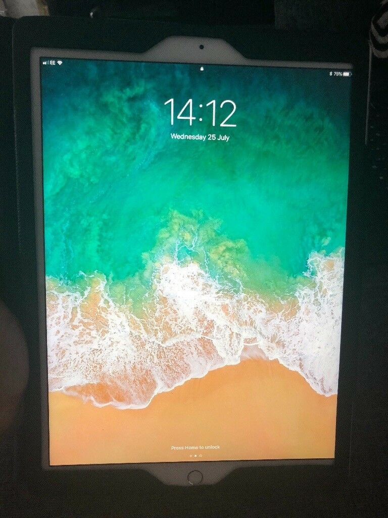 Almost New Apple Ipad Pro 129 512gb Silver Cellular And Wifi In 105 Only