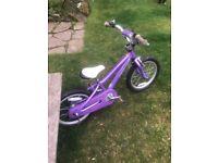 Cracking Kids Specialized Bike