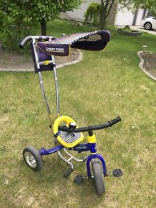 Huffy Canopy Trike for toddlers