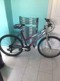 ladys bike