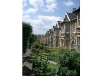 Gorgeous sunny 2 bedroom garden flat in Bear Flat, short walk into town, terrific local amenities