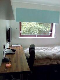 An single bedroom en-suite newly refurbished