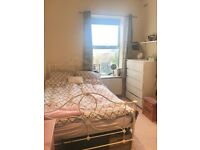 Spacious furnished double room to rent in 2 bed modern flat