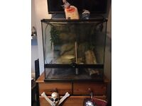 Large reptile tank verve good condition used for a few weeks