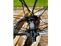 WTB 29 er Santa cruz OEM Mountain bike wheels, hope EVO pro hubs