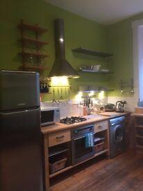 Lovely large 1 bedroom flat on quiet street in Stockbridge