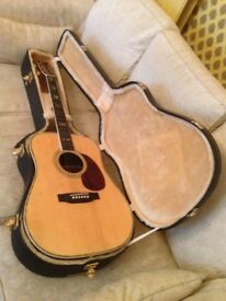 Acoustic guitar, never used