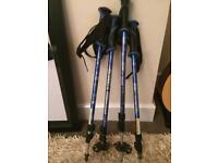 Black Diamond Alpine Walking Poles