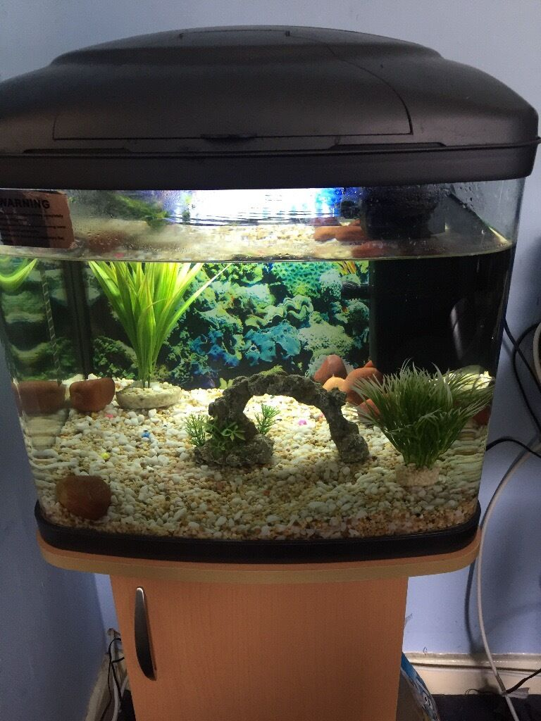 48 litre fish tank plus stand decorations in sheffield for Aquarium 80 litres