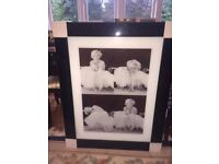 NEW large marilyn monroe picture black and white with black frame approx 30 x 38
