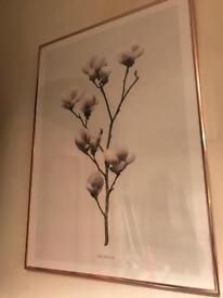 Flower Poster and Frame