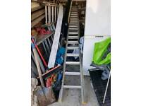 10m ally ladders