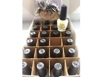 OPI mini envy box of 24 3.7ml treats