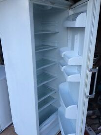 Hotpoint tall fridge
