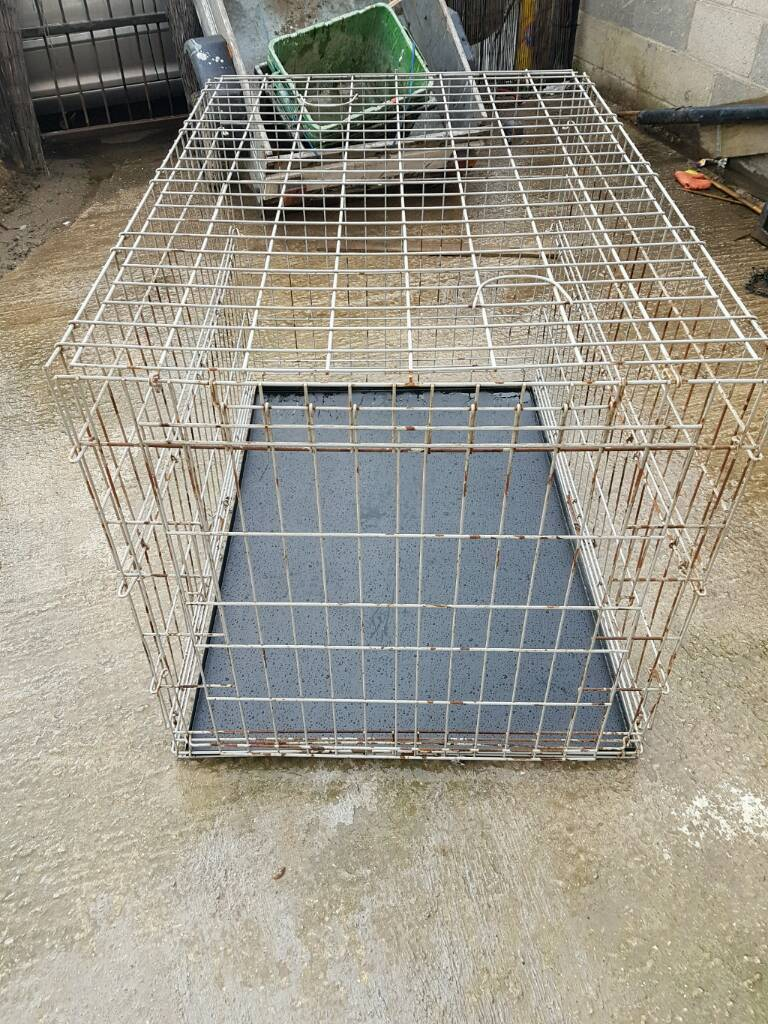 Large Collapsible Dog Cagein Castleford, West YorkshireGumtree - Large Collapsible Dog Cage For Sale in used condition pick up castleford town center