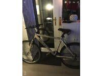 Gents Viking Comfort CX24 Bike