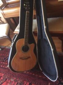 Guitar (electric acoustic)