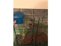 2 gerbils and cage