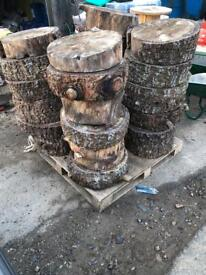 Dried out logs tree - craft