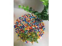 Fish tank with plastic plants