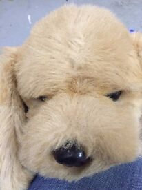 Large cute cuddly dog in excellent condition still with tags on from a smoke free home.