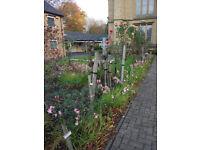 Garden design and maintenance @ Natural Habitat - Unearth your garden's true potential