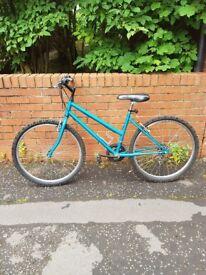 Ladies Bike £60