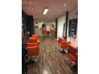 hairdresser salon stylist job wanted