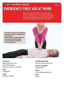 Emergency First Aid Training Course: Kilmarncok