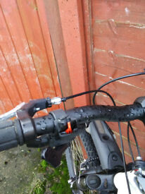 Specialized bicycle bike