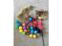 Random selection of cat toys