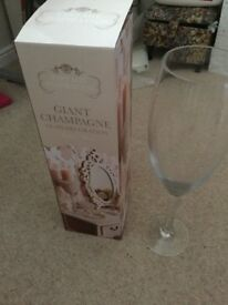 Giant/large champagne glass unwanted gift brand new in box