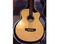 Ozark 3385 electro-acoustic bass with hard case
