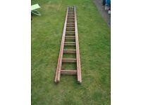 Outdoor Extending Ladder