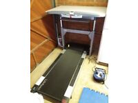 Lifespan TR5000-DT Treadmill Walking Desk Electronic Height adjustable large belt